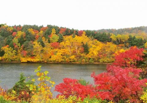 桶沼と紅葉