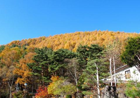 浅間山荘に戻る