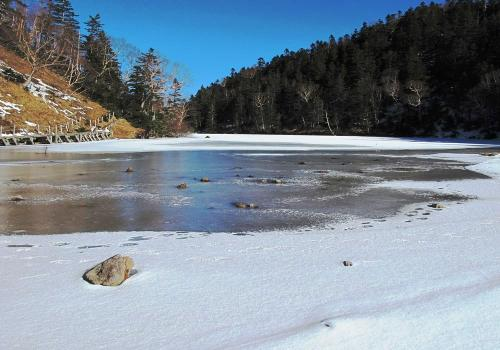 氷結した池面