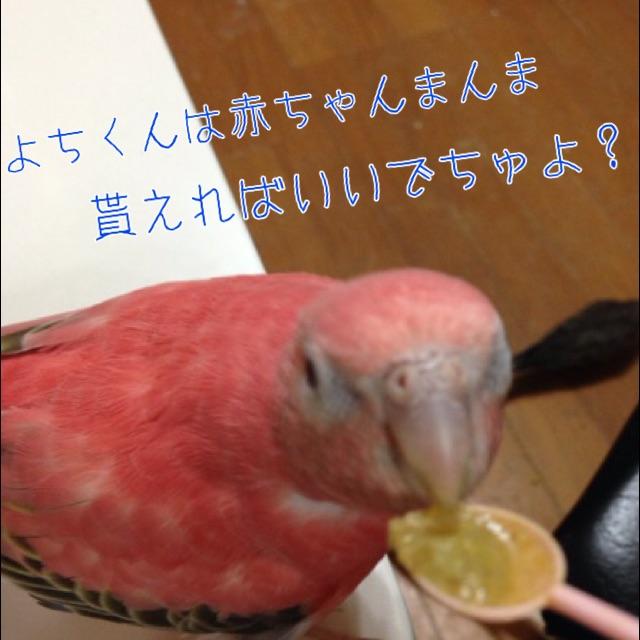 20141023230857665.jpg