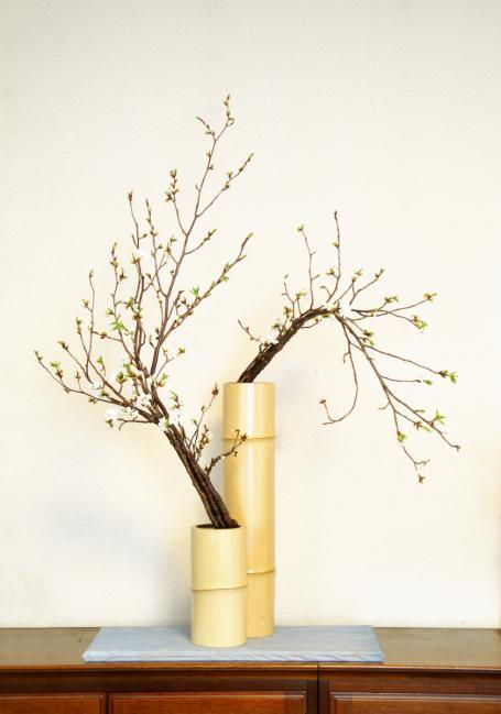 山桜のコピー2
