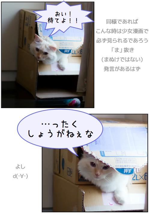 20110804_omake2.jpg
