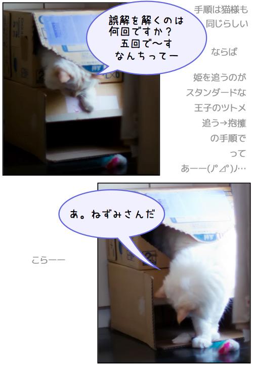 20110804_omake3.jpg