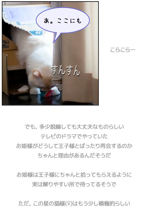 20110804_omake4.jpg