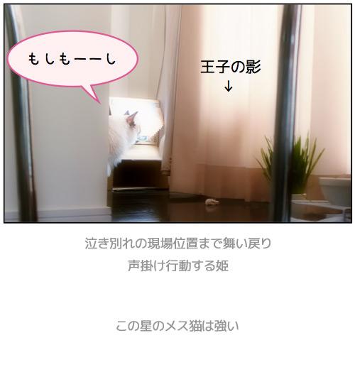 20110804_omake5.jpg