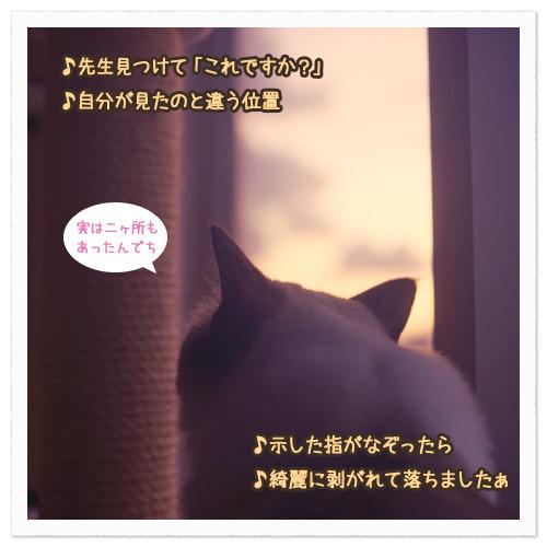 20110810_2.jpg