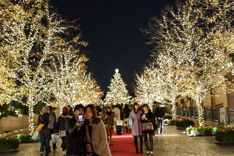 2013-12-09_christmas_lights-03.jpg