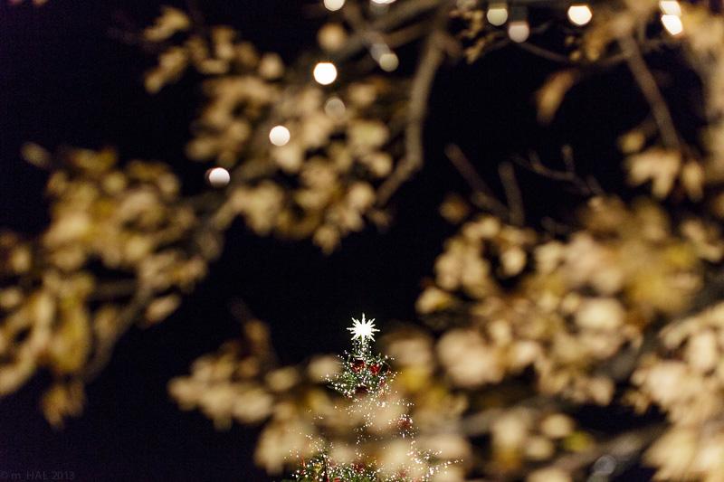 2013-12-09_christmas_lights-05.jpg