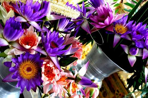 17きれいな仏花