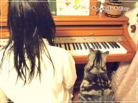 なっちゃんとチョコとピアノ