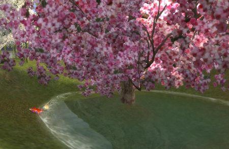 狐と桜2_R