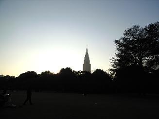 新宿御苑夕景