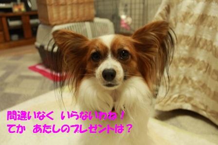 IMG_0658.jpg