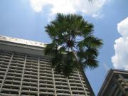 マレーシア クアラルンプール ホテル外観