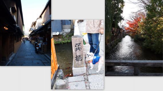 2010-12-048_convert_20110110202844.jpg
