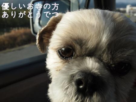 ・搾シ姫C030657_convert_20101219202959