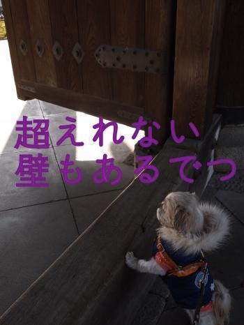 ・搾シ姫C040828_convert_20101220225838