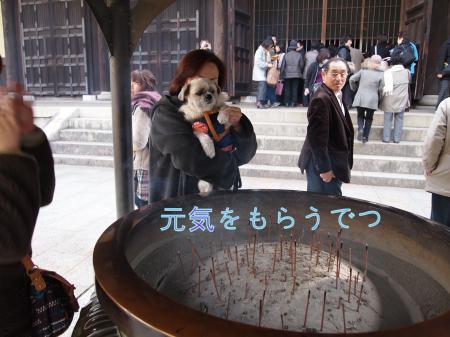 ・搾シ鳳C040841_convert_20101220224951