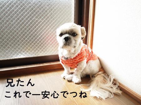 ・搾シ姫C091014_convert_20101221012413