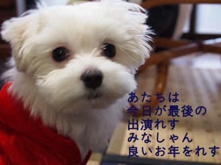 ・搾シ姫C250063_convert_20101226011143