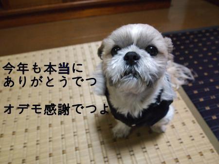 ・搾シ姫C310090_convert_20101231013231