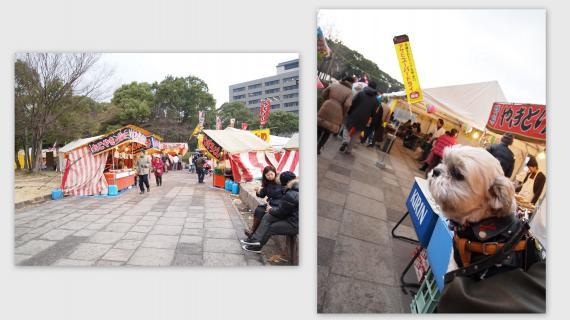 2011-01-095_convert_20110110014644.jpg