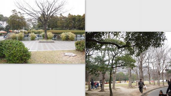 2011-01-09_convert_20110110014306.jpg