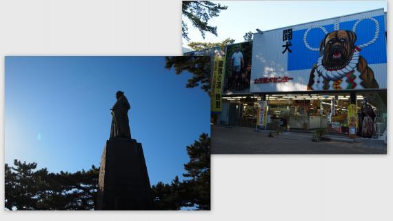 2011-01-13_convert_20110124173553.jpg