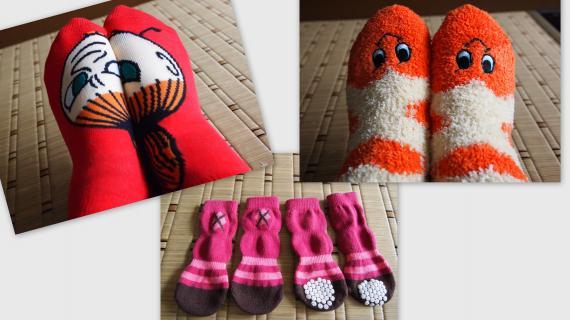 2011-01-21_convert_20110121153258.jpg