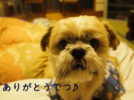 ・搾シ姫1120369_convert_20110122022011
