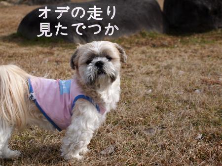 ・搾シ姫1280688_convert_20110130003205