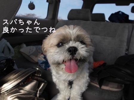 ・搾シ姫1280682_convert_20110130022421