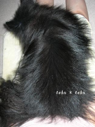 004_20100801220639.jpg