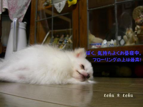 012_20100903234220.jpg