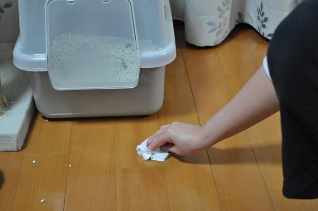 お掃除シート使用_1