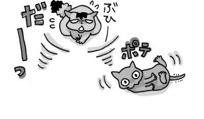 IMG_0003+-+繧ウ繝斐・+(12)_convert_20120315131617