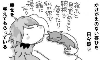 IMG+-+繧ウ繝斐・+(2)_convert_20120529095947