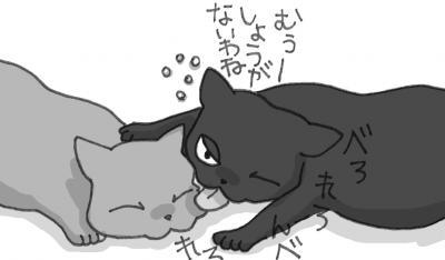 IMG+-+繧ウ繝斐・+(11)_convert_20121108054757