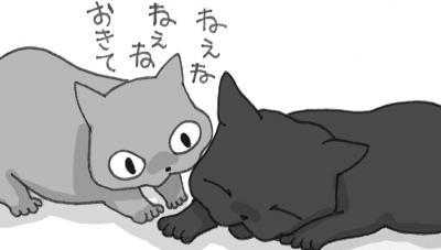 IMG+-+繧ウ繝斐・+(9)_convert_20121108054651