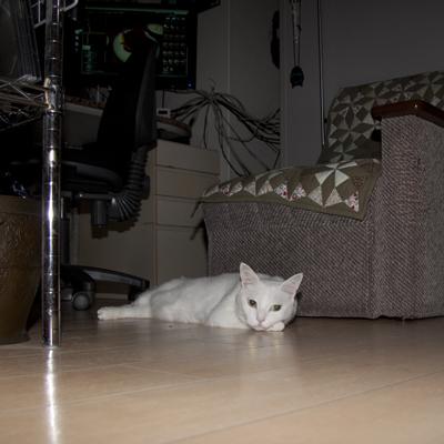 20100913_02.jpg