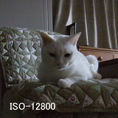 20101024_07.jpg