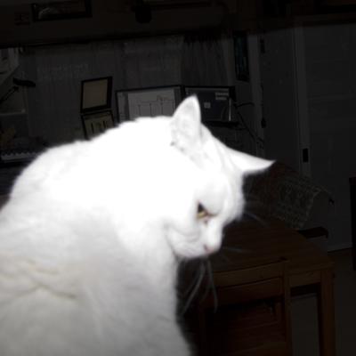 20101112_03.jpg
