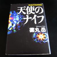h100829s.jpg