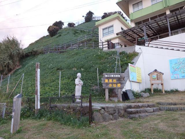 淡路島 黒岩スイセン郷
