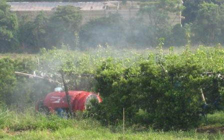 農薬と自然農 (2)