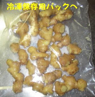 ショウガ冷凍保存 (4)