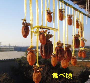干し柿 (2)
