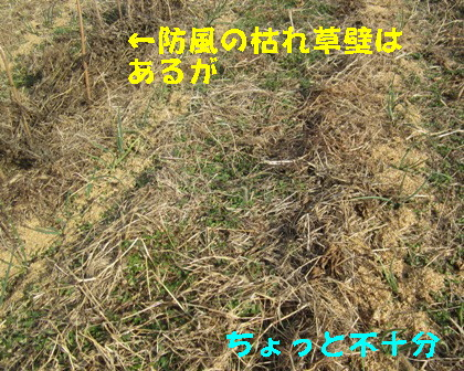 保温 (1)