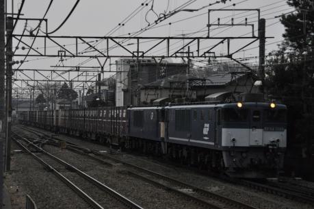 DSC_1856