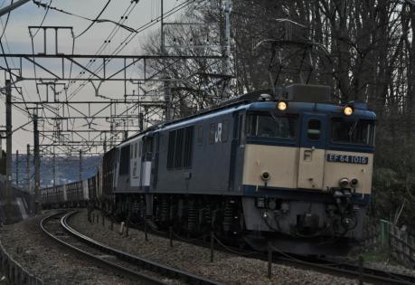 DSC_0181